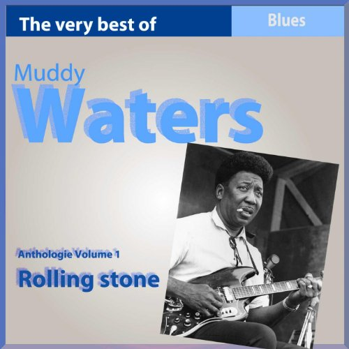 The Very Best of Muddy Waters:...