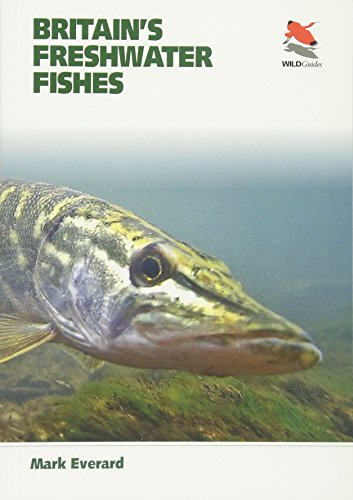 Britain's Freshwater Fishes (WILDGuides)