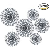 Set Of 6 Silver Colour Party Decoration Paper Fan For Wedding Party , Birthday Party , Baby Shower ,Theme Party Decoration