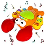 Think Gizmos Musical Toy For Babies & Toddlers Aged 1 2 3 4 5+ TG721 - Education Toddler Toy Gift For Boys & Girls - Musical Lobster