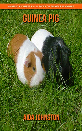 Guinea pig: Amazing Pictures & Fun Facts on Animals in Nature (English Edition)