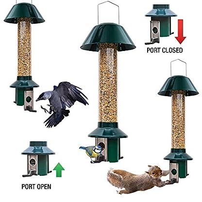 Squirrel Proof Wild Bird Feeder - Roamwild PestOff (Mixed Seed / Sunflower Heart Feeder) 3
