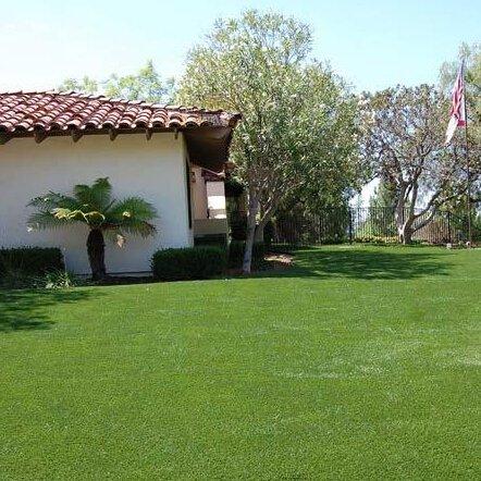 300Stück Rasensamen/Bio Rasen Gras Samen, niedrig/Vier Jahreszeiten grün geeignet für Familie Garten
