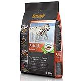 Belcando Adult Power [5 kg] Hundefutter | Trockenfutter für sehr aktive Hunde & Sporthunde | Alleinfuttermittel für ausgewachsene Hunde ab 1 Jahr