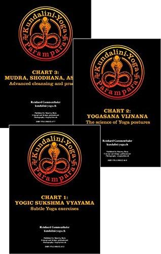 Paket Yogacharts -