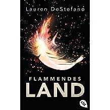 Flammendes Land (Die Chroniken der Fallenden Stadt 2) (German Edition)