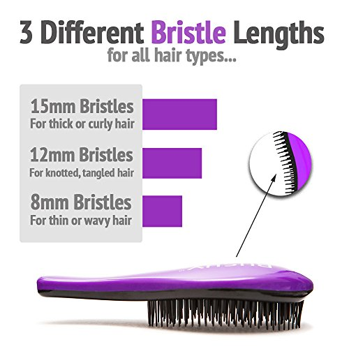 51FhxbxwZYL - Bushy Brush Original Detangling Hairbrush - Lush Lilac