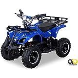 Kinder Elektro Miniquad Torino 800 Watt (Blau)