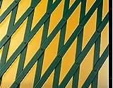Catral 43060003 - Celosía deco PVC extensible, 1.0 x 200 x 100 cm, color verde