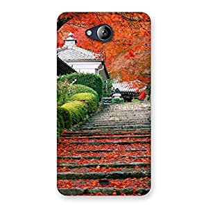 Stylish Stairs Garden Multicolor Back Case Cover for Canvas Play Q355