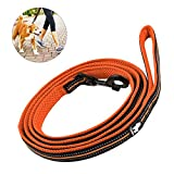RCruning-EU Hundeleine 2M Verstellbare Durable Nylon Reflektierende Hundetraining für kleine, mittlere und große Hunde-Orange
