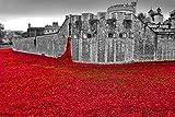 Tower of London Mohnblumen-Fotografie, Fotodruck des Tower of London Mohnblume Land and Seas of Red England UK Landschaftsfoto, S/W Bild, Kunstdruck, Fotografie, Geschenk, multi, 22,9 x 15,2 cm