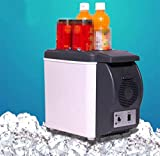 AMYMGLL Mini portatile 6L mini frigorifero dell'automobile fredda immagazzinaggio caldo e freddo doppio con una tazza di tensione 12V automobile 220V potere domestico 48 (W) peso 2.4kg con il formato della scatola: 34.1 * 29.3 * 20.7cm