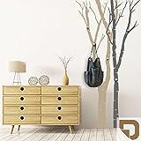 DESIGNSCAPE® Garderobe Birkenstämme | Bäume als Garderobe mit Haken 102 x 200 cm (Breite x Höhe) Farbe 1: kupfer inkl. 6 Edelstahl Wandhaken DW811050-M-F24