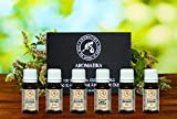 Ätherische Öle set, 100% Pur, Geschenk Set Top 6 х 10 ml - Orangenöl, Pfefferminzöl, Eukalyptusöl, Zitronenöl, Teebaumöl, Lavendelöl, Aromatherapie Öl Geschenkset von Aromatika