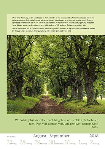 Mit Gott durch das Jahr - Kalender 2018 - Harenberg-Verlag - Wochenkalendarium - 54 Blatt mit Zitaten- Wandkalender - 25 cm x 35,5 cm - 4