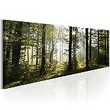 decomonkey | Bilder 150x50 cm XXL | 1 Teilig Wald | Leinwandbilder | Vlies Leinwand | Wandbilder | Wand | Bild auf Leinwand | Wandbild | Kunstdruck | Wanddeko | Natur Landschaft Baum Bäume | DKB0202a1PXXL