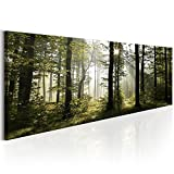 decomonkey Bilder Wald 120x40 cm 1 Teilig Leinwandbilder Bild auf Leinwand Vlies Wandbild Kunstdruck Wanddeko Wand Wohnzimmer Wanddekoration Deko Natur Landschaft
