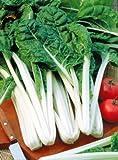 Mangold White Silver breite Rippen Züchtersaat 5 g Samen
