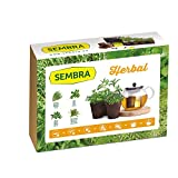 Sembra Herbal - Kit de Cultivo