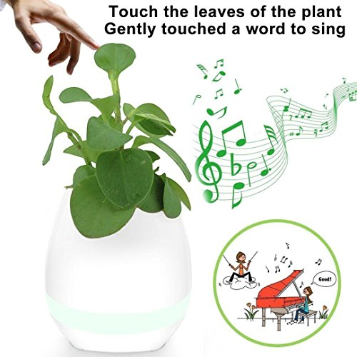 Music Flower Pot Play Piano on a Real Plant...