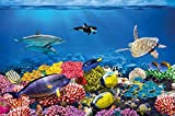 great-art Fototapete Unterwasserwelt – Wandbild 210x140 cm 5-teilige Meeres Wandtapete