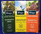 Kneipp 3er Sauna Set 3 x 100 ml