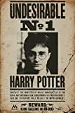 Póster 'Harry Potter' Undesirable No. 1/Indeseable Nr. 1 (61cm x...