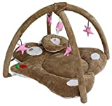 Baby Playgym cum Bedding Brown 0-12 Months - Best Reviews Guide