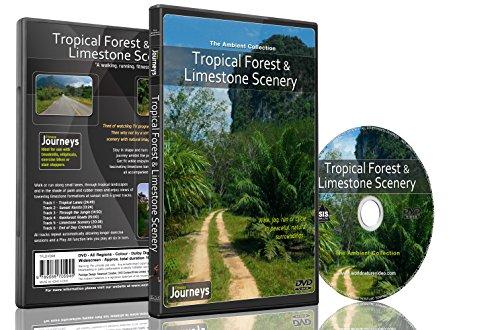 Fitness Reisen- Tropischer Wald und Kalkstein Landschaft , Radfahren und Laufband-Training