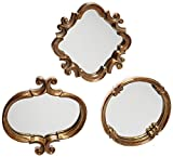 IMPORT Collection 22-511 Meadow Mirror Set of 3 by Import Collection