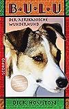 Bulu: Der afrikanische Wunderhund - Dick Houston