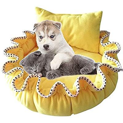 QYJpB Cute Pumpkin Nest Teddy Kennel Small Dog Innovative Cat Litter Winter Warm Pad Pet Dog Cat Supplies from QYJpB