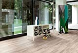 Parador Laminat Urban 8-32 - Ocean Teak - Hochwertiger Laminatboden mit Klick-Verbindung - Set mit 10 Dielen im Paket = 2,49 m²