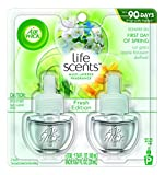 First Day of Spring : Air Wick Scented Oil Refill Plug in Air