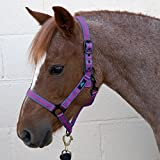HY - Cabezada para caballos Navy/Light Blue Talla:Cob