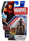 Marvel Universe Year 2009 Series 2 HAMMER Single Pack 4 Inch Tall Action Figure #23 - MARY JANE WATSON with Puppy Dog and Figure Display Stand Plus Bonus Classified File with Secret Code by Hasbro