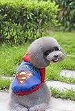 NqceKsrdfzn Pet Clothes Pet Supplies Misc Pet Winter Wear Teddy Clothes Superman Sweater Batman Sweater (Color : Black, Size : XXL) Dog Costume (Color : Blue, Size : XL)