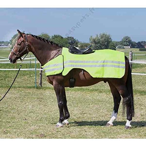 Harry\'s Horse 32207000-xl Ausreitdecke Reflective, XL