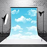 MASUNN 3X5Ft Bleu Ciel Blanc Nuages Fond Photo - Best Reviews Guide