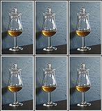 6 Whisky Gläser Form Signatory