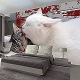 Estéreo Hermoso Gato Foto Revestimiento De Pared Sala De Estar Dormitorio Comedor Mural Papel De Pared 3D Tela De Seda De Imitación 300X210Cm