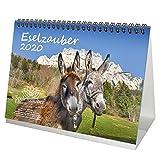 Eselzauber DIN A5 Tischkalender 2020 Esel - Seelenzauber