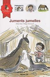Juments Jumelle (jumeaux, naissance, frère, soeur, cheval, poney)