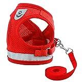 NIBESSER Hundegeschirr für Kleine Hunde Katze Hundegeschirr mit Sicherheitsgurt Größenverstellbar, Front Range Geschirr Reisenweste