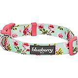 Blueberry Pet Frühlingsduft Inspiriertes Geblümtes Rosenmuster Türkis Hundehalsband, M, Hals 37cm-50cm