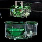 ECMQS Clear pesce allevamento Isolation Box serbatoio acquario auto pesce circolare incubatrice