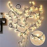 ZRR LED Schwarze Rattanlampe, 2,5 M 72 Lichter 8 Blinkende Modi, die Lichter für Weihnachten verzieren, Halloween, Zuhause, Hochzeit, Party, Outdoor Indoor Decor, Wasserdicht