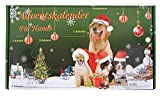 Leitner Adventskalender für Hunde Hundespielzeug Weihnachten