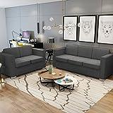 Vislone Sofás Salon Conjunto de Sofás 2 uds Incluye 1 Sofá de 2 Plazas y 1 Sofá de 3 Plazas con Estructura de Madera Patas Cromadas Tapicería de Tela Gris Oscuro